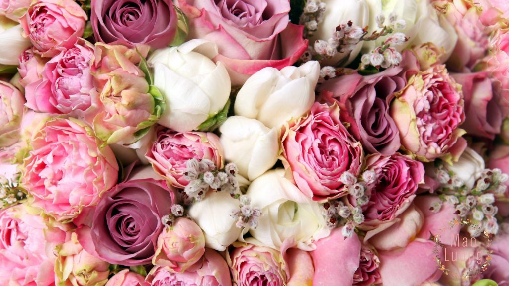 Mao Lương - Loài hoa mang ý nghĩa hạnh phúc , bình yên